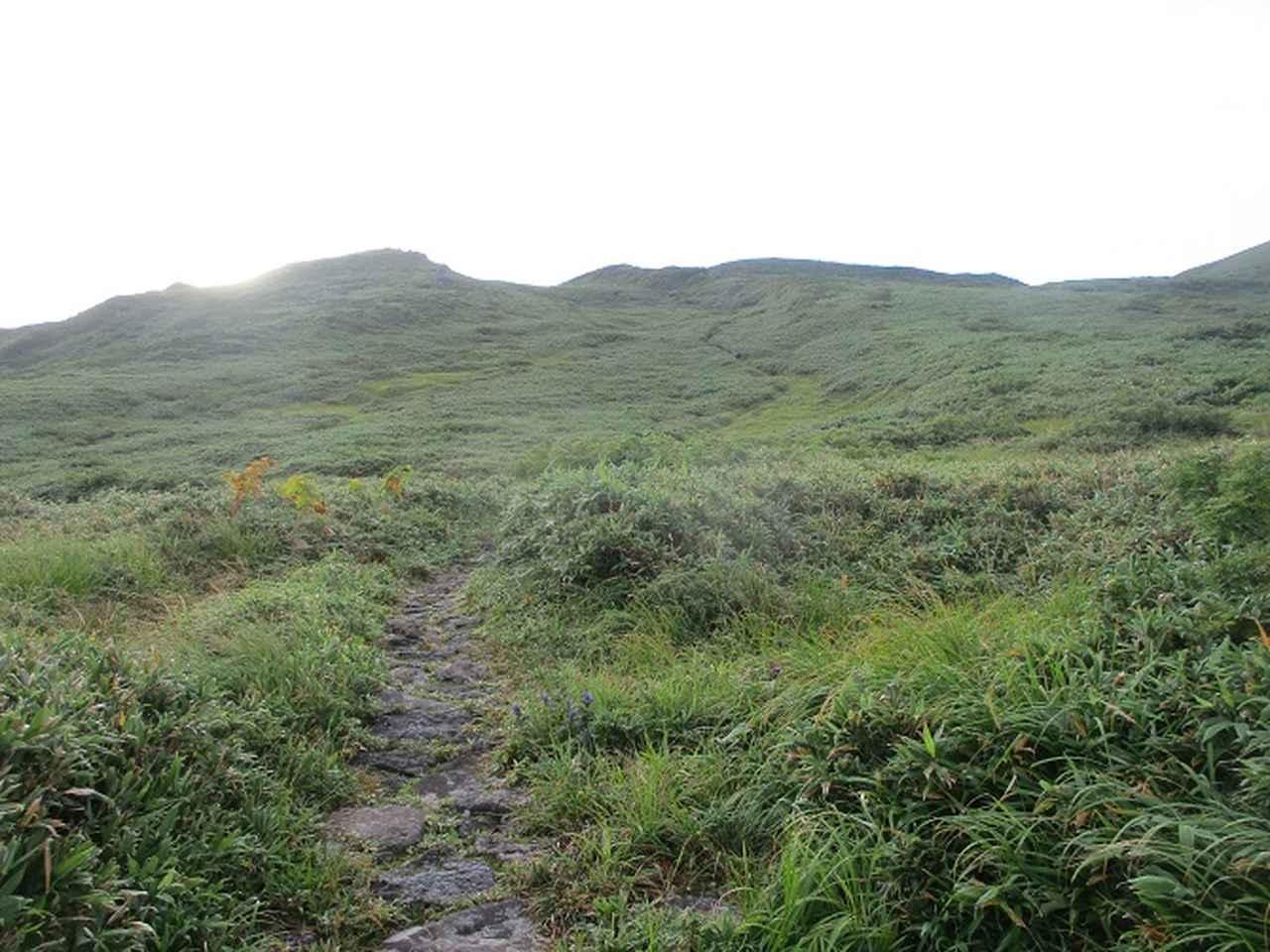 画像4: 来年夏の企画素材を探して鳥海山に行ってきました!