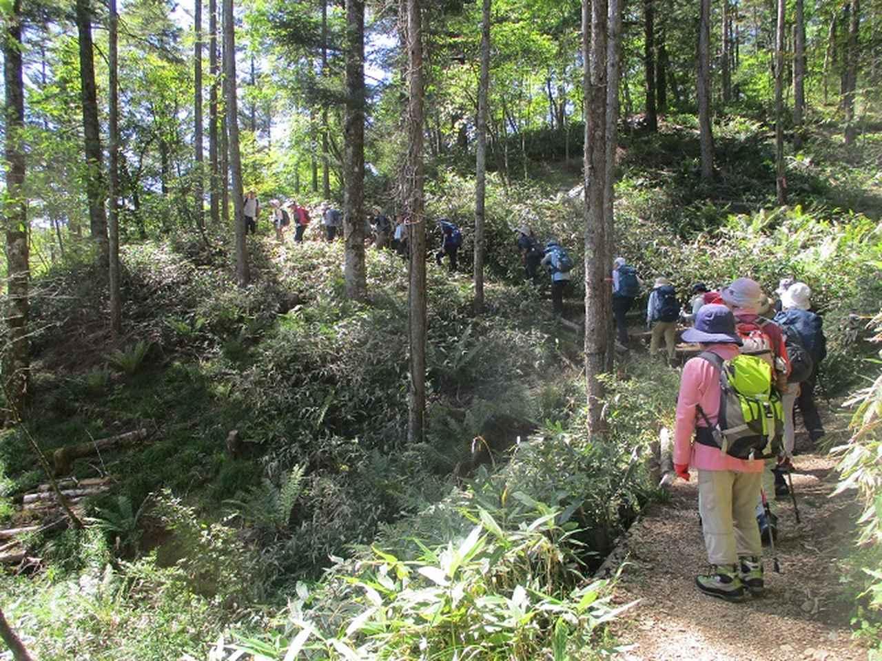 画像1: 9月12日に山旅会 「入笠山」 ツアーに行ってきました!