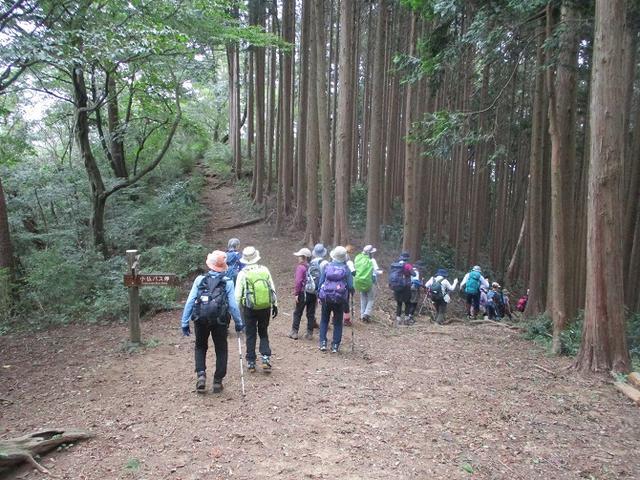 画像11: 9月14日に山旅会 「城山から景信山」 ツアーに行ってきました!