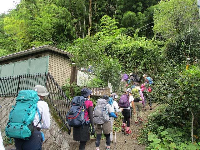 画像1: 9月14日に山旅会 「城山から景信山」 ツアーに行ってきました!