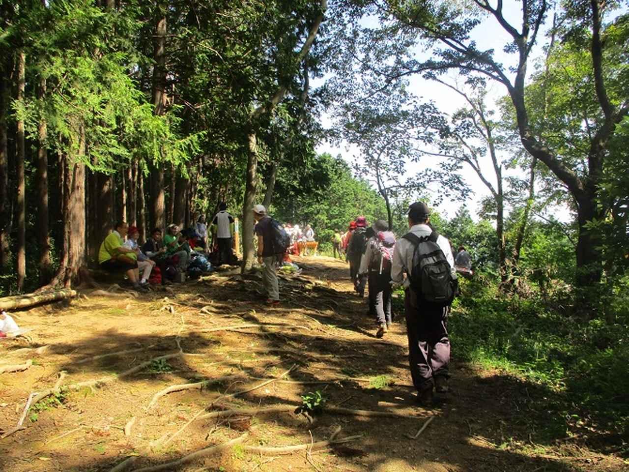画像7: 9月20日に山旅会 「ユガテ~日和田山~巾着田」 ツアーに行ってきました!