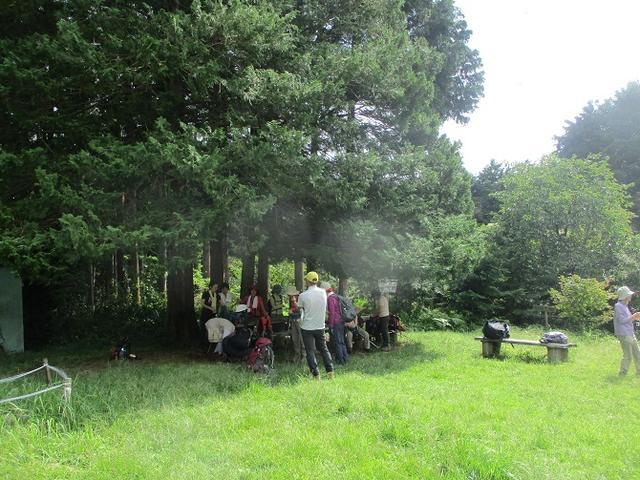 画像4: 9月20日に山旅会 「ユガテ~日和田山~巾着田」 ツアーに行ってきました!
