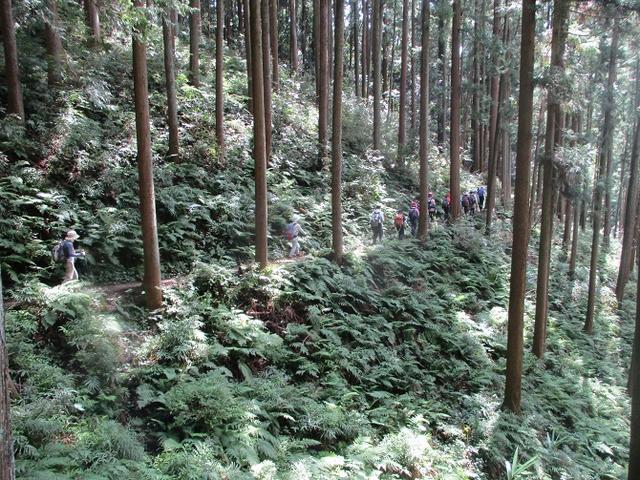 画像5: 9月20日に山旅会 「ユガテ~日和田山~巾着田」 ツアーに行ってきました!