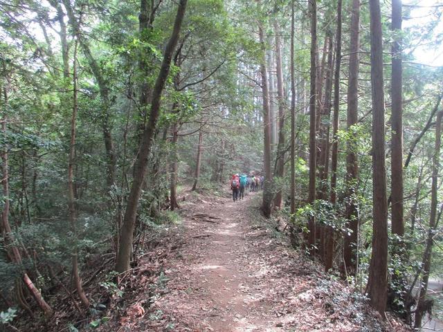 画像6: 9月20日に山旅会 「ユガテ~日和田山~巾着田」 ツアーに行ってきました!