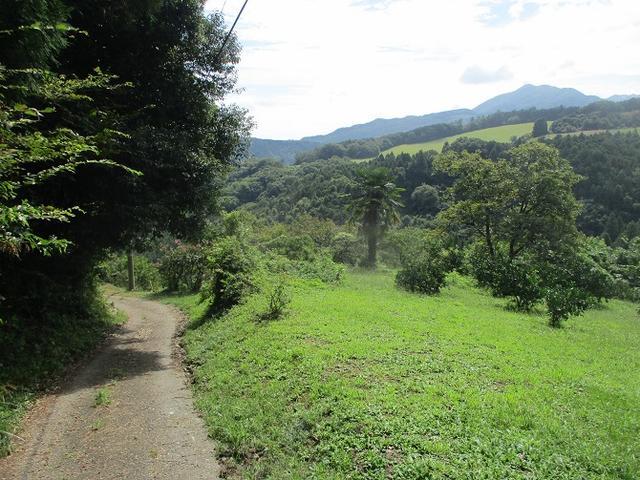 画像8: 【山旅会・登山ガイドこだわりツアー】岡田ガイドからの便り・大霧山ツアーの下見に行ってきました!