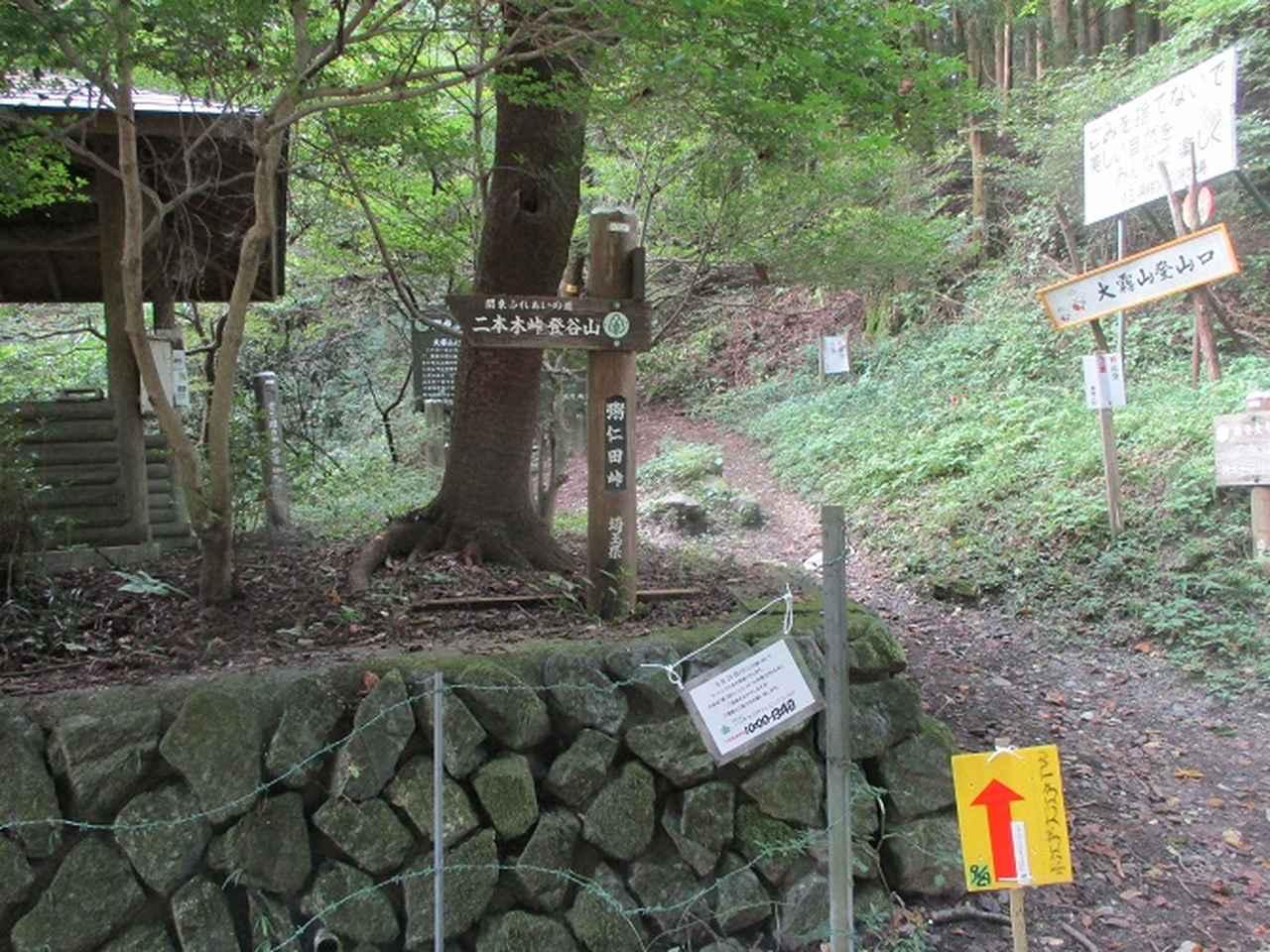 画像7: 【山旅会・登山ガイドこだわりツアー】岡田ガイドからの便り・大霧山ツアーの下見に行ってきました!