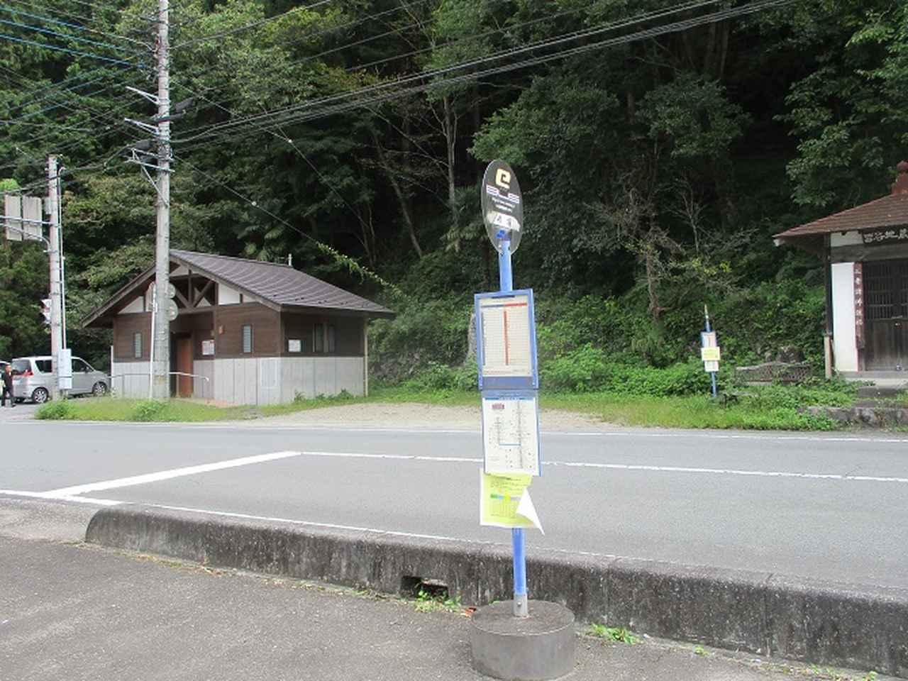 画像9: 【山旅会・登山ガイドこだわりツアー】岡田ガイドからの便り・大霧山ツアーの下見に行ってきました!