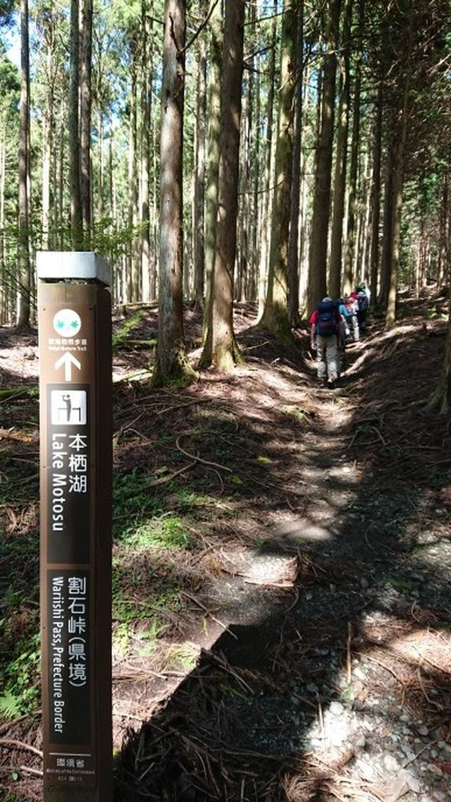 画像2: 9月19日に佐藤威行ガイドのコースで、毛無山塊にたたずむ 「雨ケ岳」 へ行って来ました♪