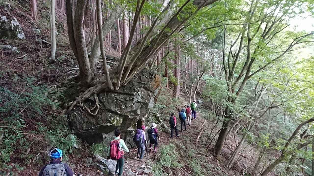 画像12: 9月19日に佐藤威行ガイドのコースで、毛無山塊にたたずむ 「雨ケ岳」 へ行って来ました♪