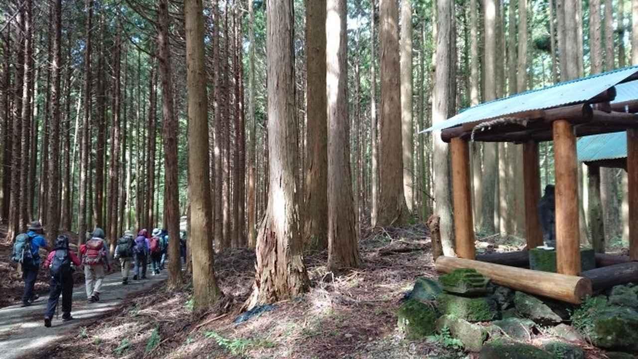画像1: 9月19日に佐藤威行ガイドのコースで、毛無山塊にたたずむ 「雨ケ岳」 へ行って来ました♪