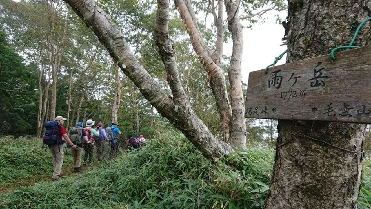 画像8: 9月19日に佐藤威行ガイドのコースで、毛無山塊にたたずむ 「雨ケ岳」 へ行って来ました♪
