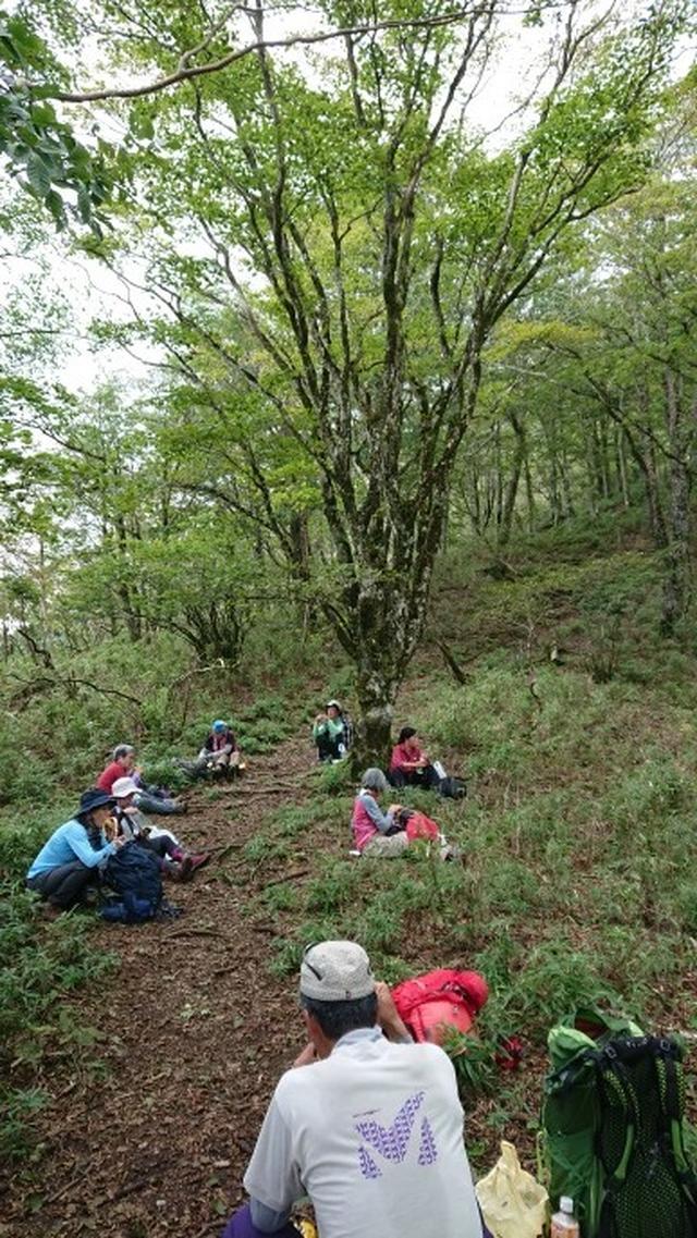 画像4: 9月19日に佐藤威行ガイドのコースで、毛無山塊にたたずむ 「雨ケ岳」 へ行って来ました♪