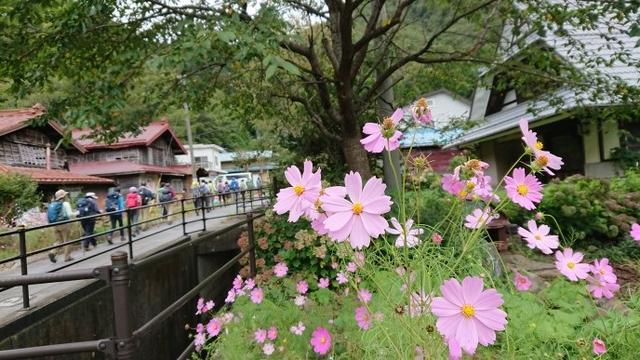 画像1: 9月16日に宮下ガイドのコースで精進湖の近くにたたずむ 三方分山 へ行って来ました♪