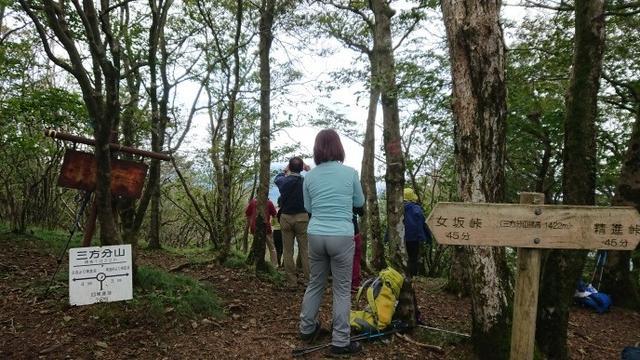 画像6: 9月16日に宮下ガイドのコースで精進湖の近くにたたずむ 三方分山 へ行って来ました♪