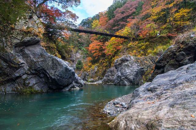 画像: 紅葉の鳩ノ巣渓谷(10月)
