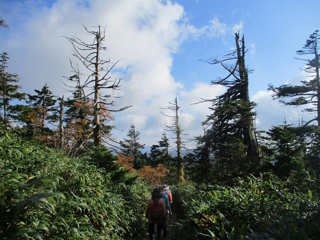 画像5: 9月30日より山旅会 「八幡平・秋田駒」 ツアーに行ってきました!