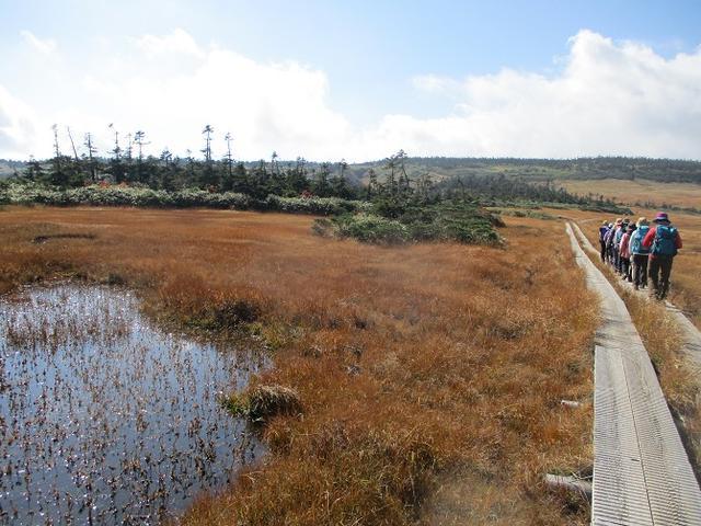 画像12: 9月30日から2日間岡田ガイドのコースで 八幡平・秋田駒ヶ岳 に行ってきました♪