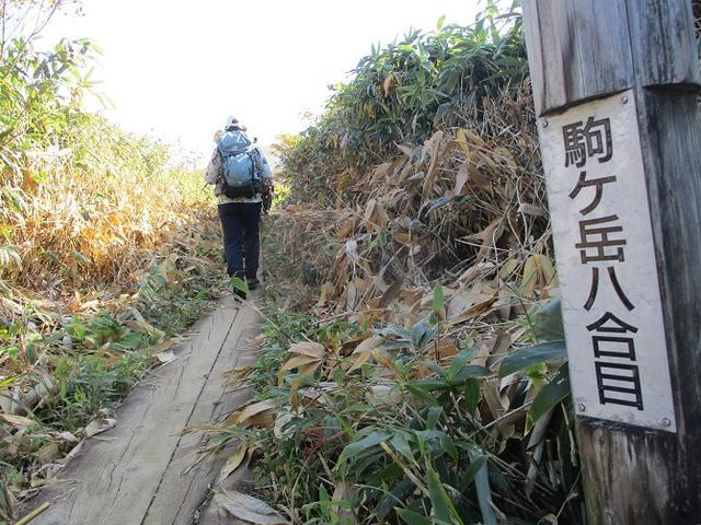 画像8: 9月30日より山旅会 「八幡平・秋田駒」 ツアーに行ってきました!