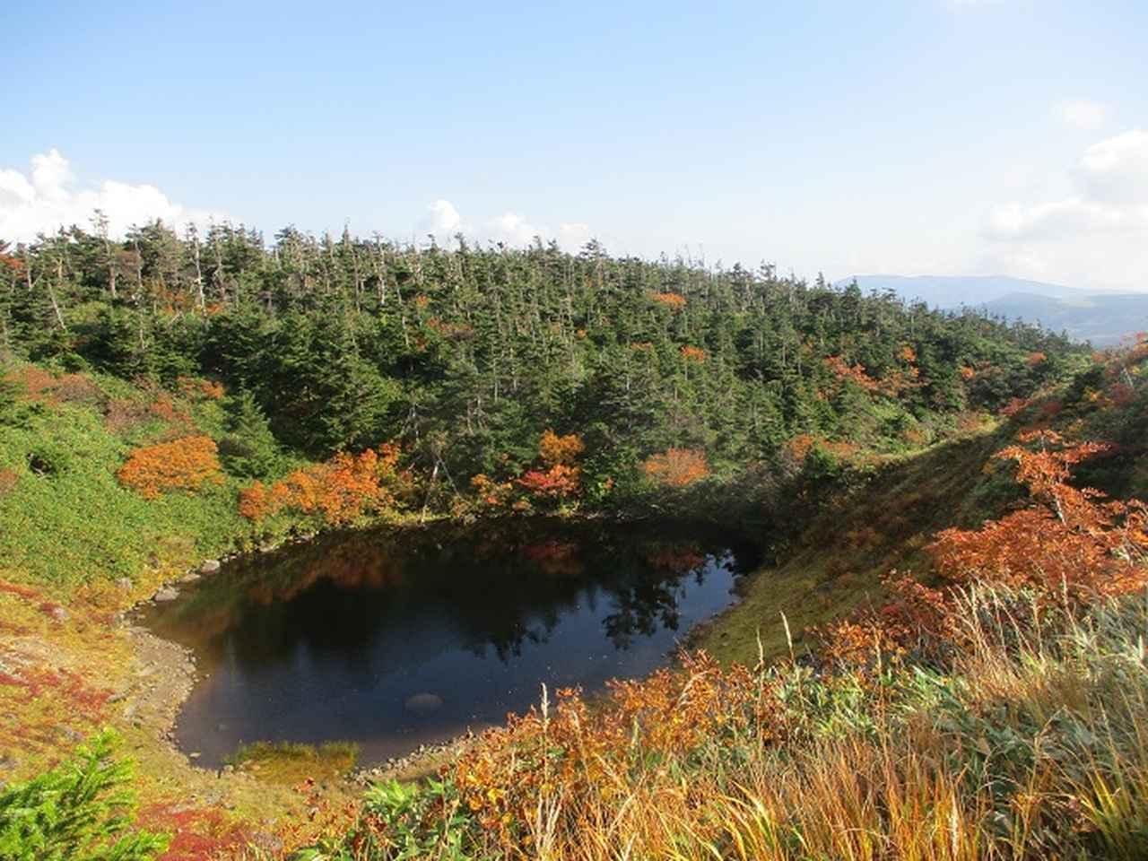 画像3: 9月30日より山旅会 「八幡平・秋田駒」 ツアーに行ってきました!