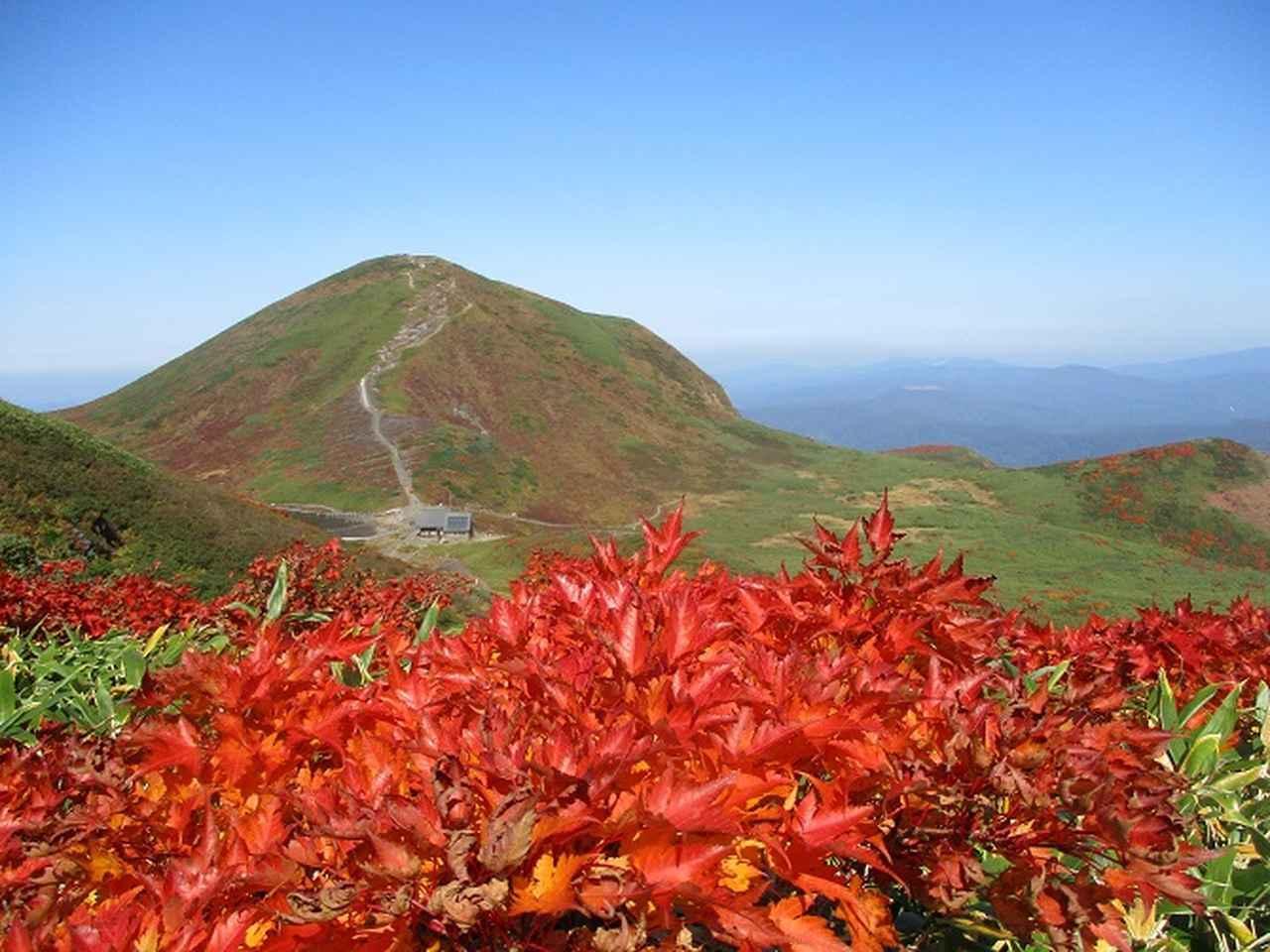 画像1: 本日は山旅会ツアー10月までの催行状況のご案内です