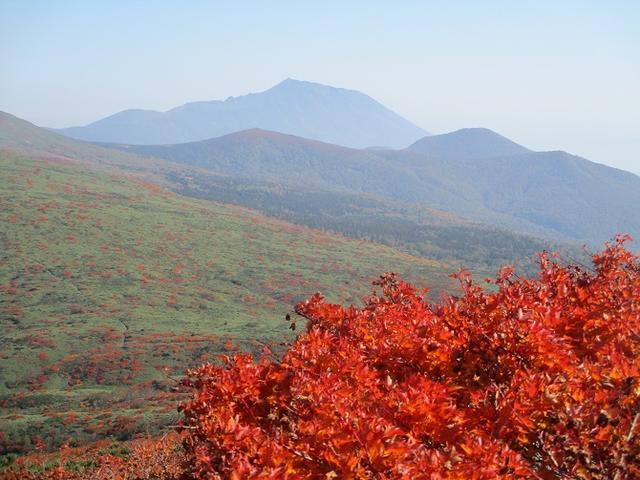 画像10: 9月30日より山旅会 「八幡平・秋田駒」 ツアーに行ってきました!