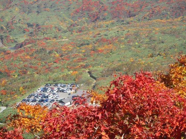 画像11: 9月30日から山旅会 「八幡平・秋田駒ヶ岳」 ツアーに行ってきました!