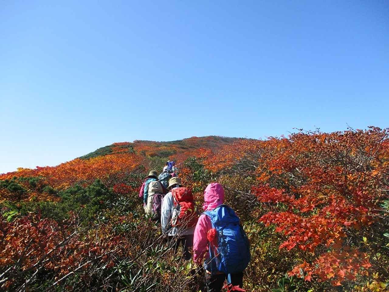 画像2: 9月30日から山旅会 「八幡平・秋田駒ヶ岳」 ツアーに行ってきました!