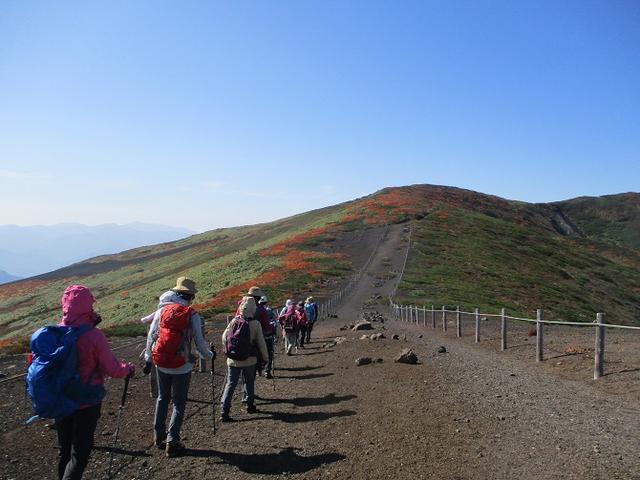 画像12: 9月30日より山旅会 「八幡平・秋田駒」 ツアーに行ってきました!