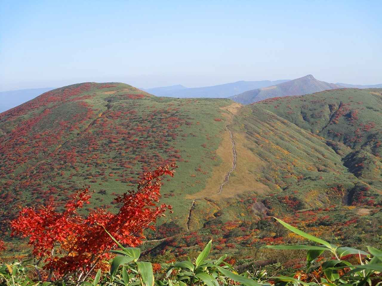 画像11: 9月30日より山旅会 「八幡平・秋田駒」 ツアーに行ってきました!