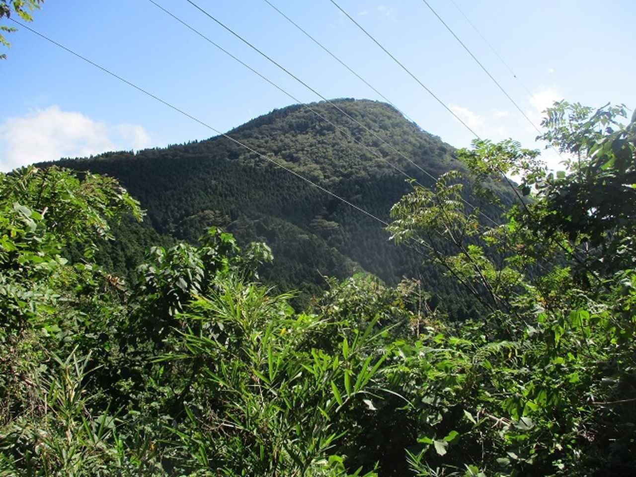 画像7: 10月の山旅会 「矢倉岳」 ツアーの下見に行ってきました!