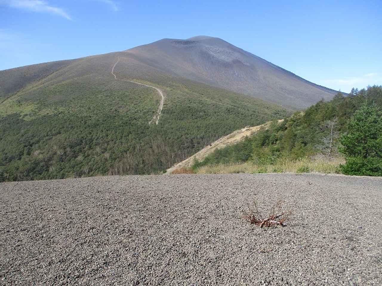 画像6: 10月の山旅会 「小浅間山と信濃路自然歩道」 の直前下見にいってきました!