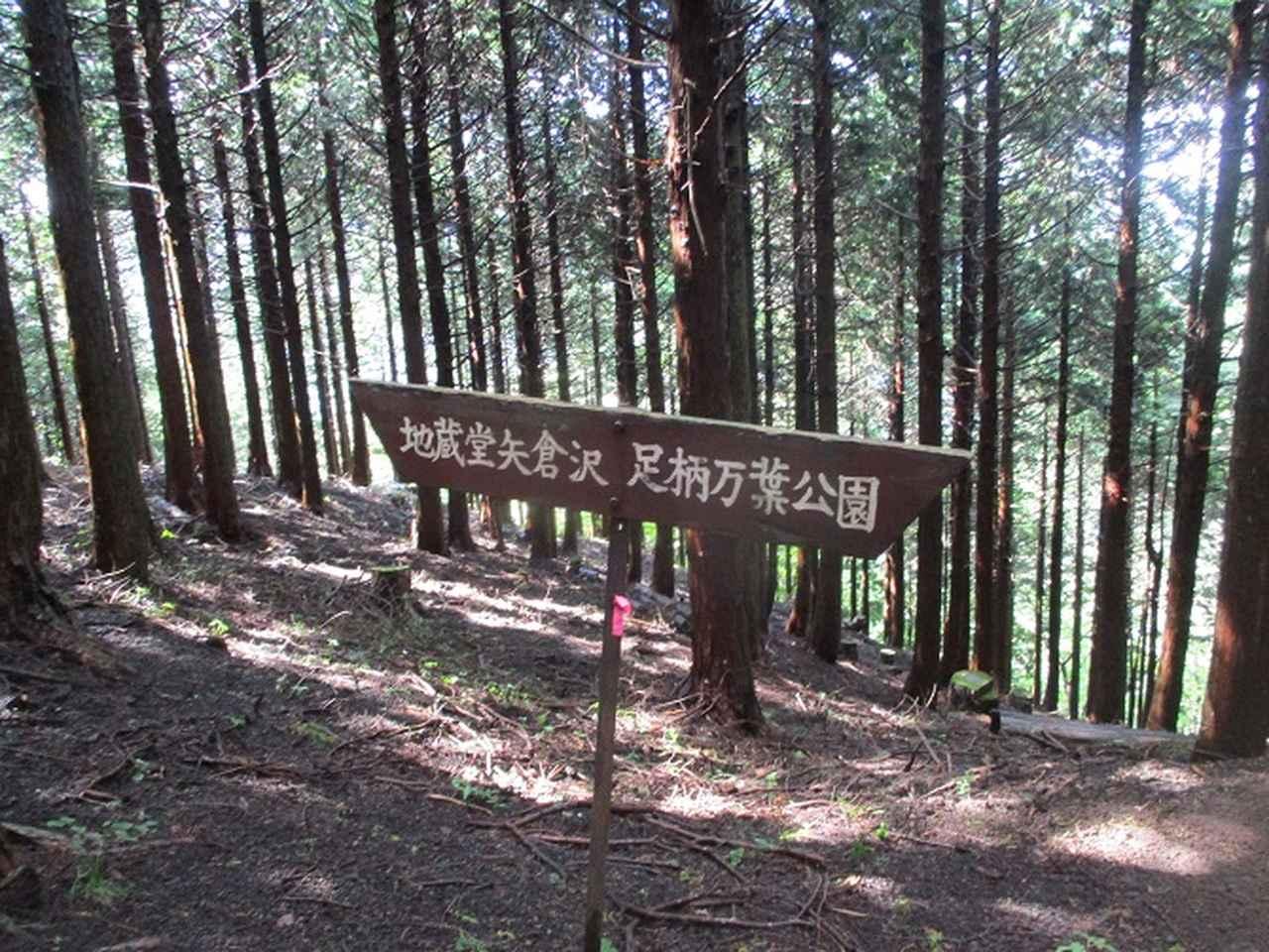 画像6: 10月の山旅会 「矢倉岳」 ツアーの下見に行ってきました!