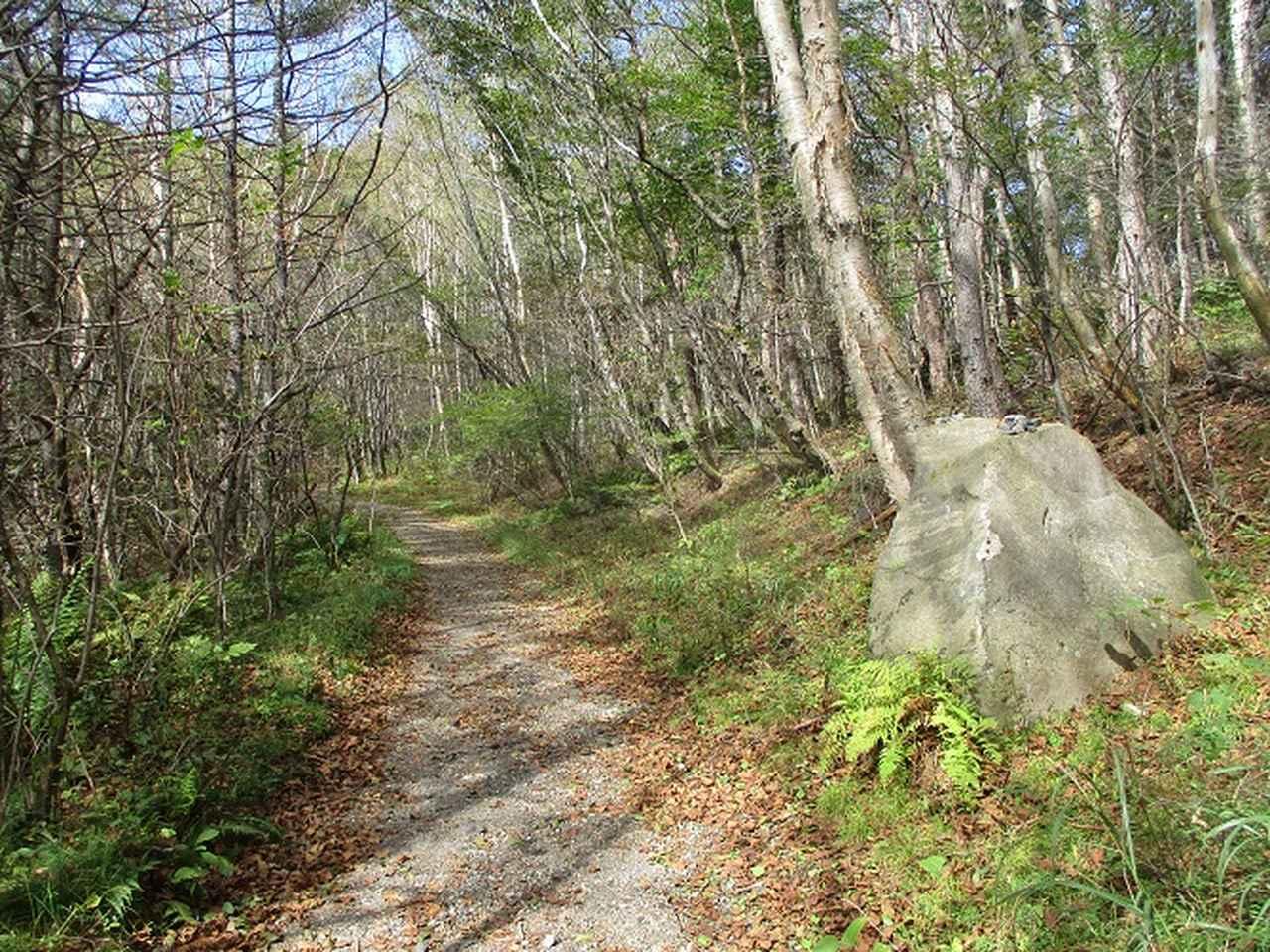 画像2: 10月の山旅会 「小浅間山と信濃路自然歩道」 の直前下見にいってきました!
