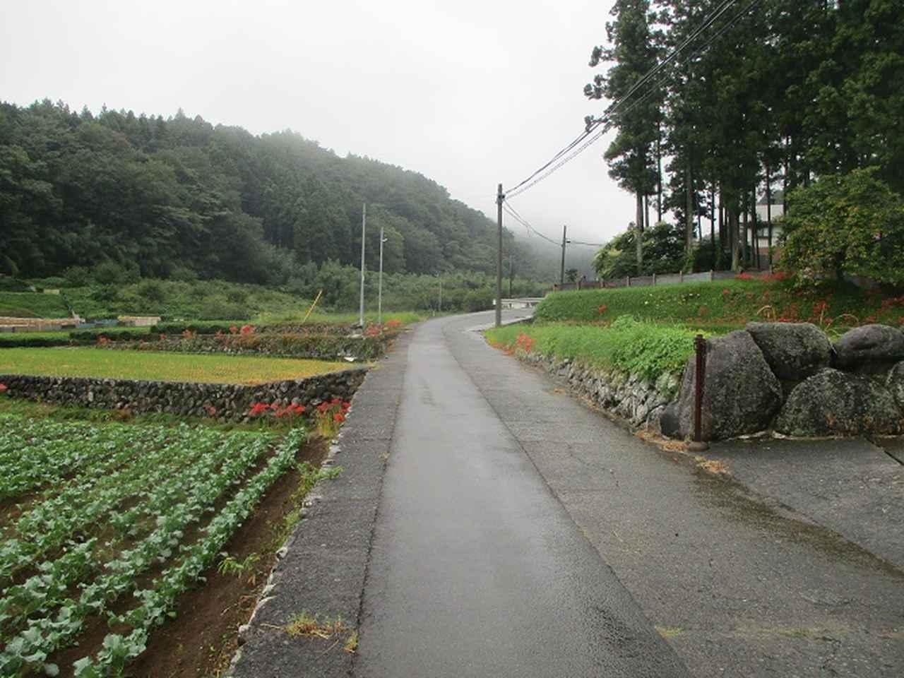 画像1: 10月の山旅会 「矢倉岳」 ツアーの下見に行ってきました!