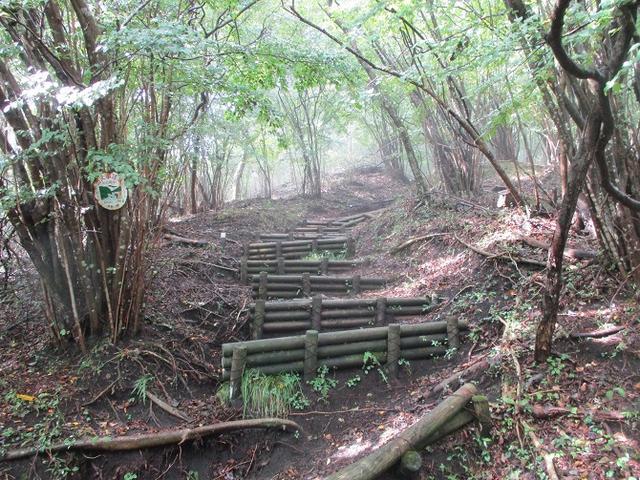 画像4: 10月の山旅会 「矢倉岳」 ツアーの下見に行ってきました!