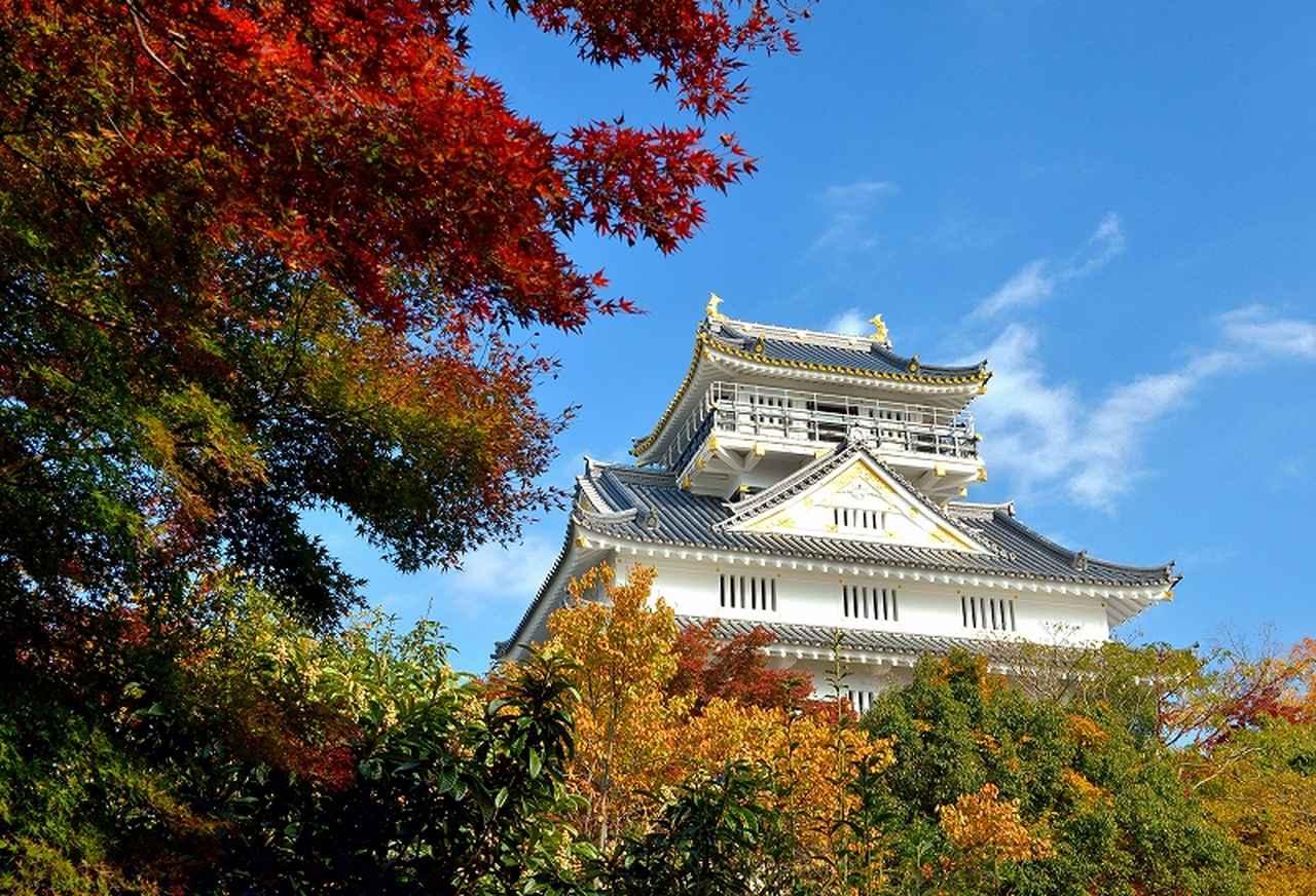画像: 紅葉の岐阜城(例年の紅葉の見頃は11月上旬~11月下旬)