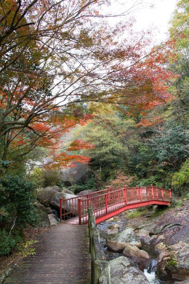 画像: 鬼岩公園(紅葉の見頃は例年10月中旬~11月下旬) 写真提供:瑞浪市観光協会