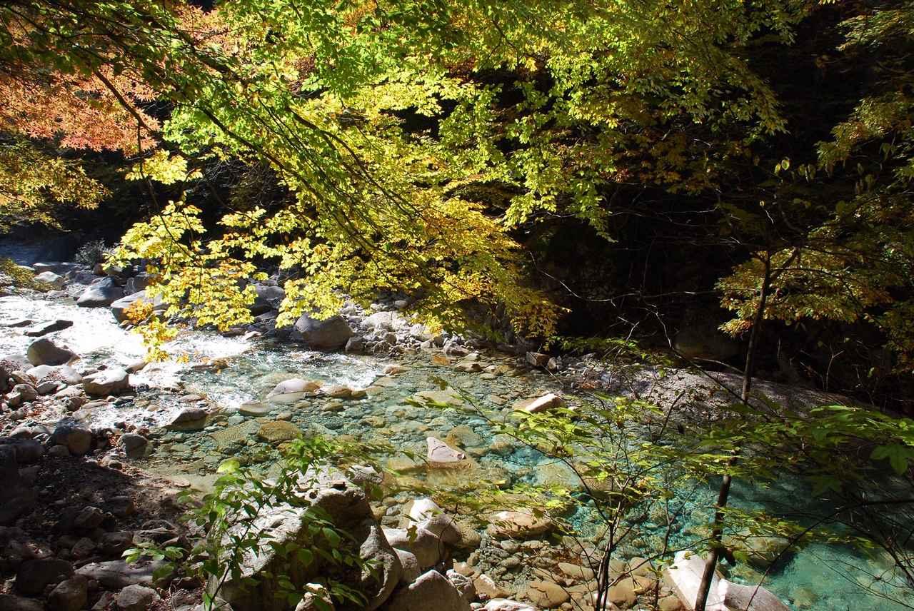 画像: 柿其渓谷の紅葉(例年の紅葉の見頃は10月中旬~11月上旬)