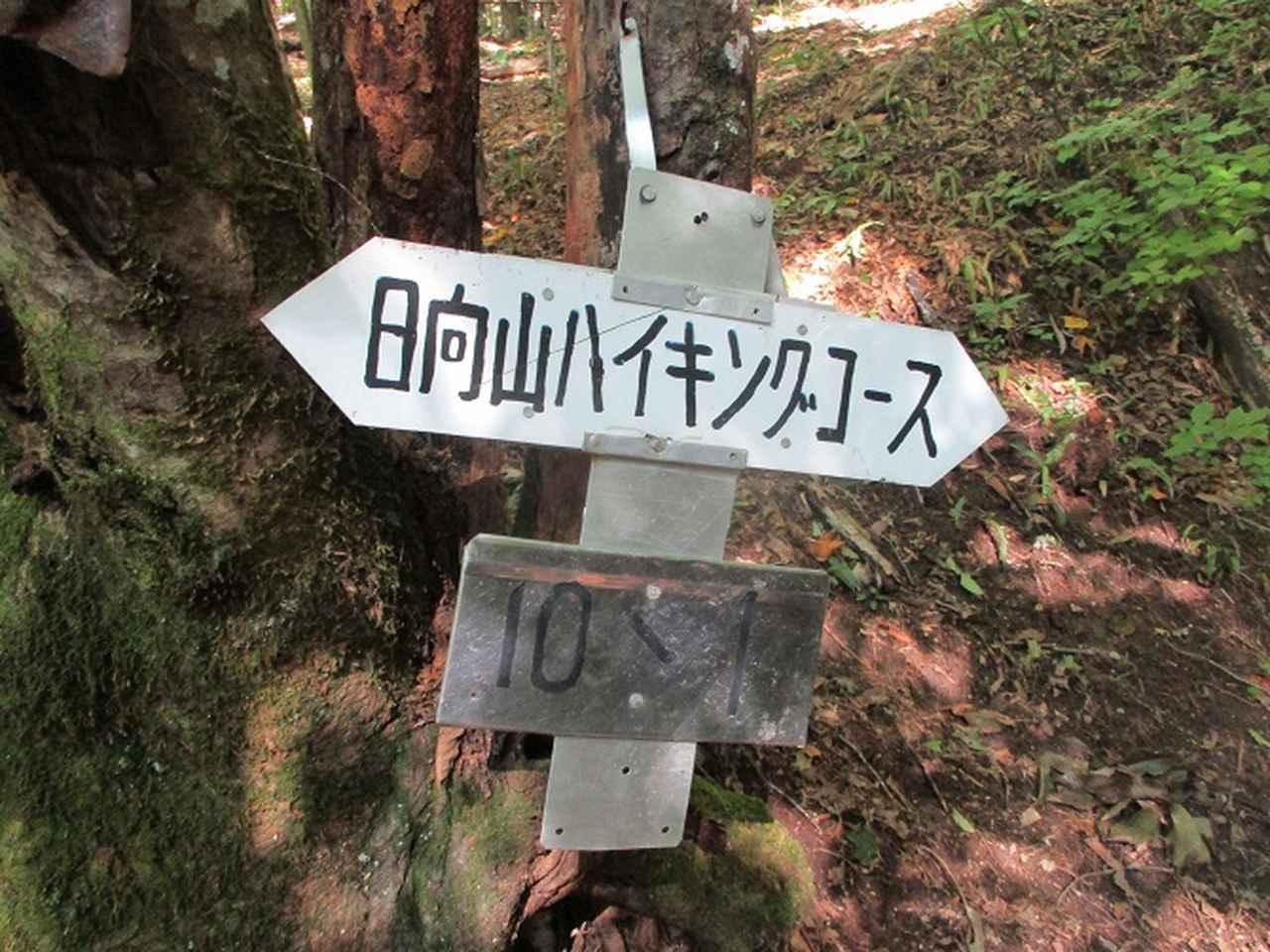 画像2: 10月の山旅会 「日向山」 の下見に行ってきました!