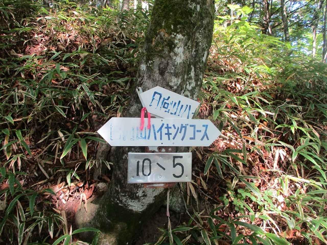 画像5: 10月の山旅会 「日向山」 の下見に行ってきました!