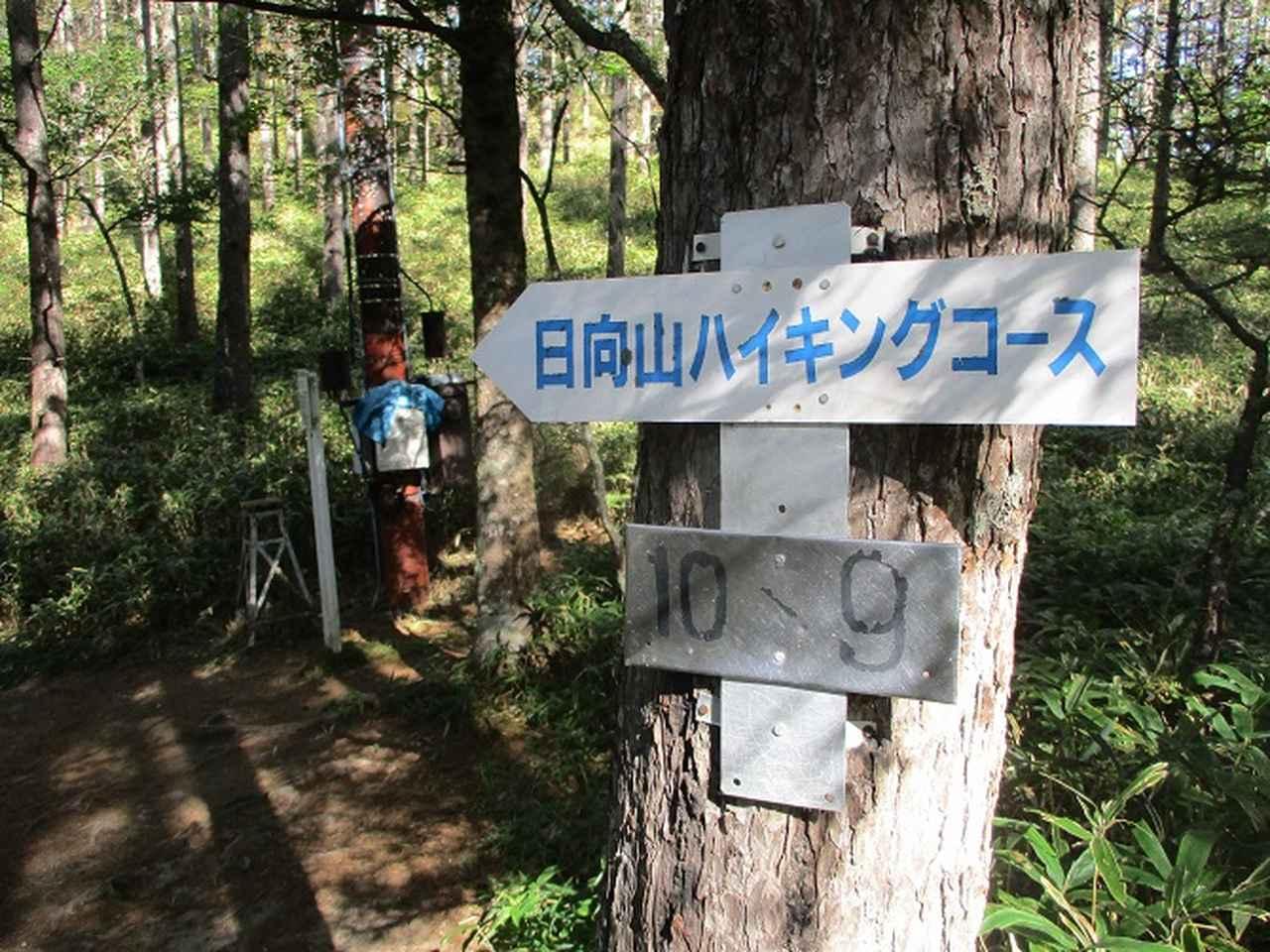 画像6: 10月の山旅会 「日向山」 の下見に行ってきました!