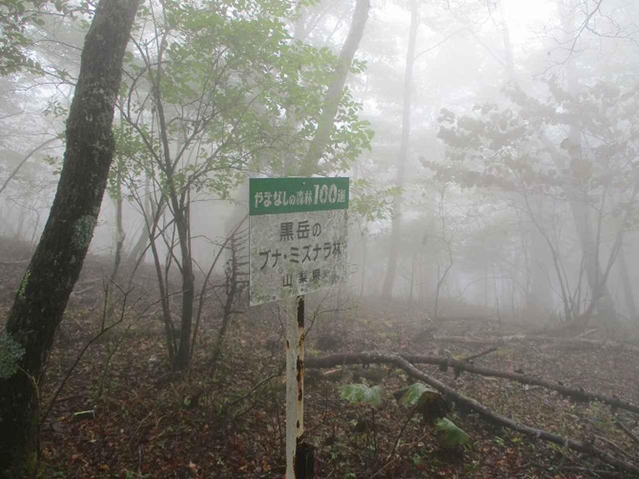画像5: 10月の山旅会 「御坂黒岳」 ツアーの下見に行ってきました!