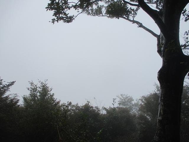画像7: 10月の山旅会 「御坂黒岳」 ツアーの下見に行ってきました!