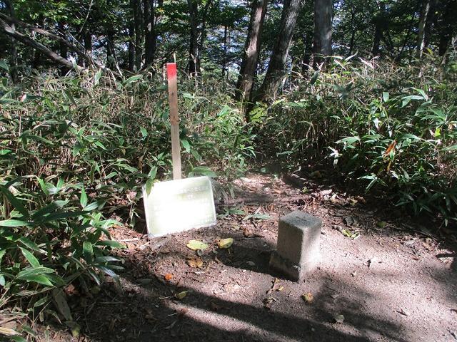 画像7: 10月の山旅会 「日向山」 の下見に行ってきました!
