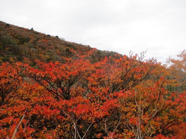 画像4: 10月10日より山旅会 「那須 茶臼岳と姥ヶ平」 ツアーにいってきました!