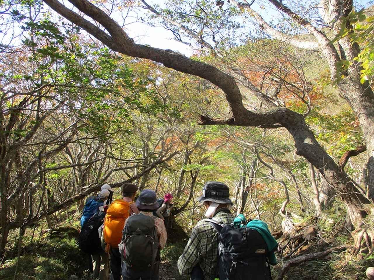 画像6: 10月10日から山旅会 「那須茶臼岳と姥ヶ平」 ツアーにいってきました!
