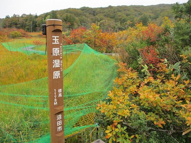 画像11: 【山旅会・登山ガイドこだわりツアー】岡田ガイドからの便り・尼ヶ禿山ツアーの下見に行ってきました!