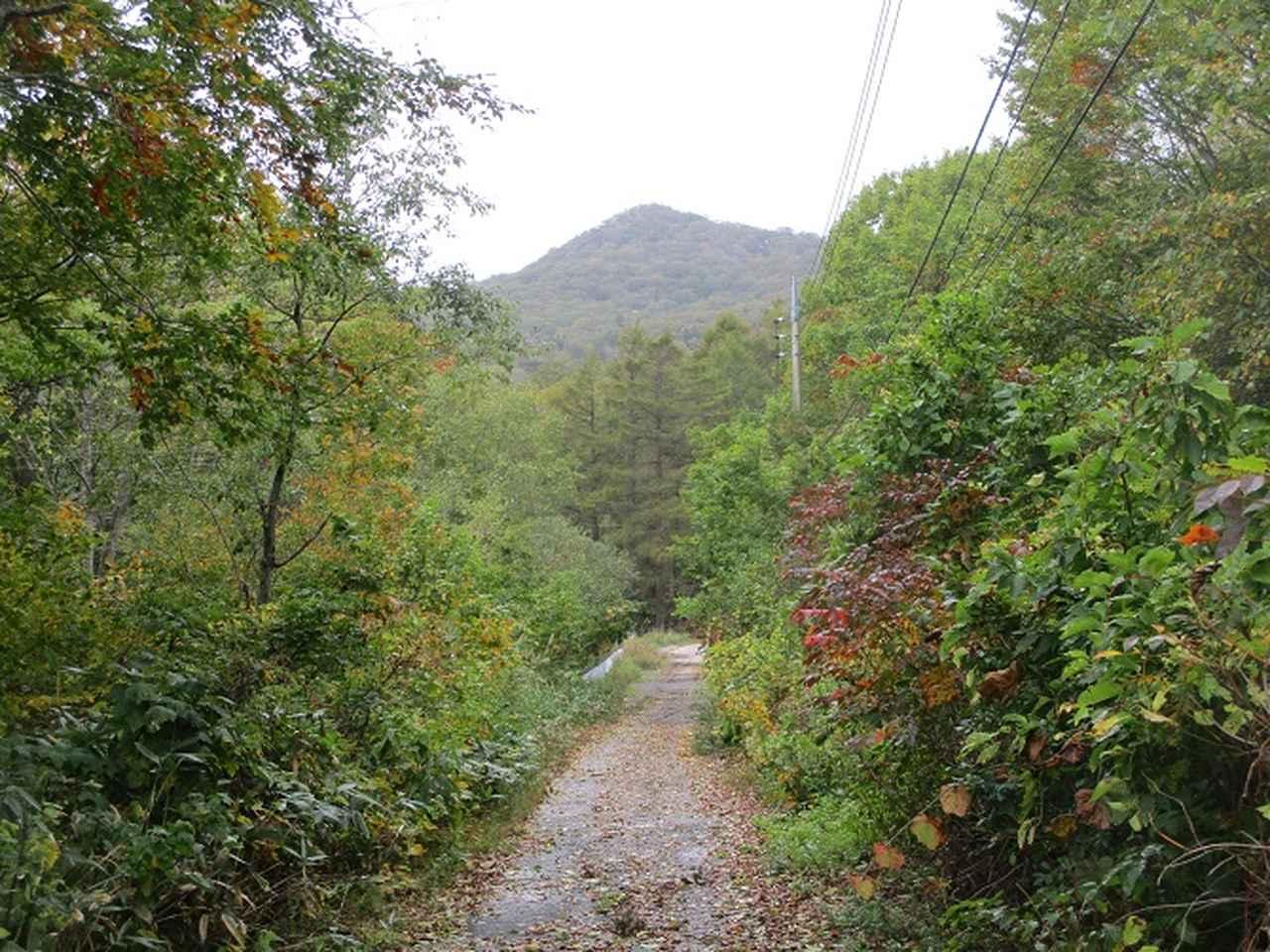 画像3: 【山旅会・登山ガイドこだわりツアー】岡田ガイドからの便り・尼ヶ禿山ツアーの下見に行ってきました!