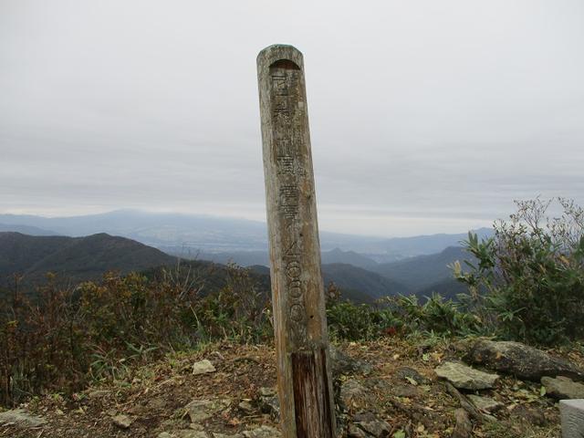 画像8: 【山旅会・登山ガイドこだわりツアー】岡田ガイドからの便り・尼ヶ禿山ツアーの下見に行ってきました!