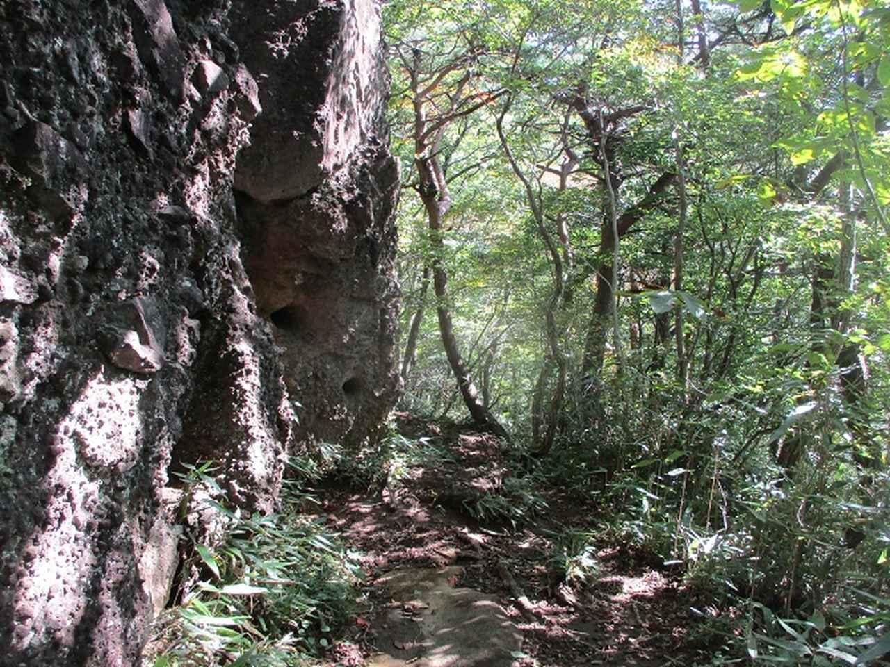 画像10: 11月の山旅会少人数ツアー 「霊山(りょうぜん)」 の下見にいってきました!